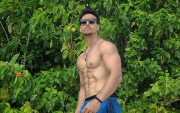 Tiger Shroff's Shirtless Pictures That Put His Godly Abs On Display; Snack On These, Girlies