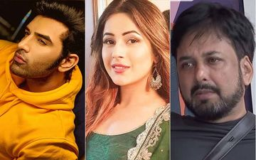 Bigg Boss 13: 'Baby, Do You Want Bhindi?' Paras Chhabra Jumps In Between Shehnaaz Gill And Siddhartha Dey