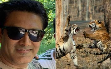 Anil Kumble's Captivating Pics Of Once-In-A-Lifetime Sighting Of Tigress Maya's Ferocious Chase Are Unmissable