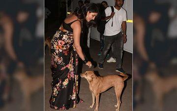 Pet Lover Priyanka Chopra Jonas Befriends A Stray Dog On The Sets Of Dance Deewane 2