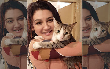 International Wild Life Day 2020: Actress Jaya Ahsan Shares Picture With Her Cat