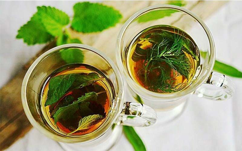 Kadha Recipe: Drink This 5 Ingredient Tulsi Herbal Tea To Boost Your Immunity And Keep Cold, Cough At Bay