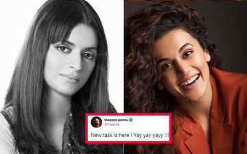 Kangana Ranaut's Sister Rangoli SLAMS Taapsee Pannu, Says 'B-Grade Mimicry Actor Ki Jali' After Taapsee's 'New Task' Tweet