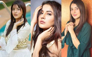 Shehnaaz Gill's Most Liked Pictures On Instagram; Don't Miss