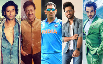TV Fraternity Divided On MS Dhoni's Retirement Talk