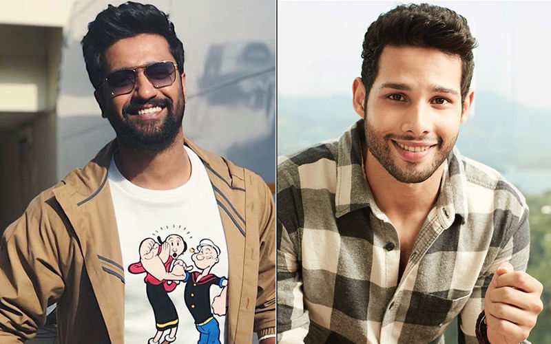 Siddhant Chaturvedi And Vicky Kaushal's Social Media Banter Is ROFL-Worthy And We Want To 'Sher' It With You