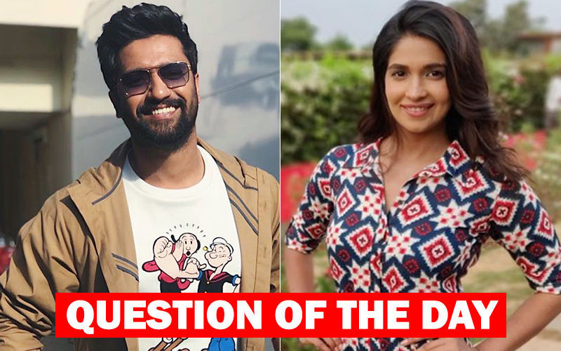 Do You Think Vicky Kaushal And Harleen Sethi Can Kiss And Make Up?