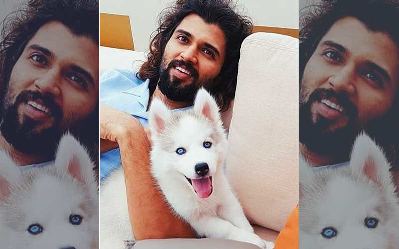 Vijay Devarakonda Sends Netizens Into A Tizzy As He Poses Shirtless With His 'Cute Beast' – PIC INSIDE