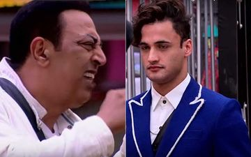 Bigg Boss 13: Vindu Dara Singh Slams Asim Riaz, Calls Him 'Chuslet'; Says 'Himalaya Jaise Aadme Se Ladna Theek Nahi Hai'