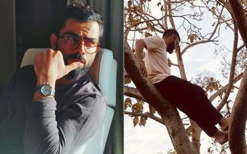 After Anushka Sharma, Hubby Virat Kohli Treats Fans With An Old Picture; Throwback To The Time When He 'Could Climb Up A Tree And Chill'