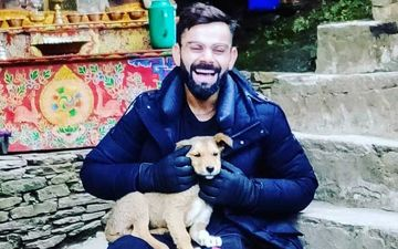 Virat Kohli Bags India's PETA Person Of The Year Award For 2019