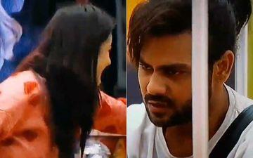 Bigg Boss 13: Vishal Singh Cries On Being Locked Up In Jail, Shehnaaz Goes ROFL; Netizens Call Her 'Emotionless'
