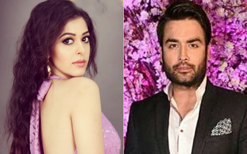 Garima Jain Dumped Vivian Dsena, Told Her Friends,